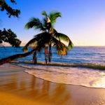EVASION – JOIE DE VIVRE – LIBERTÉ – VIVEZ LE PARADIS !